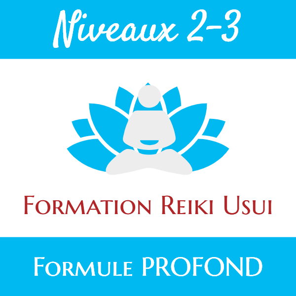 LD-Woo-Formation-Reiki-Profond-Niveaux-2-3